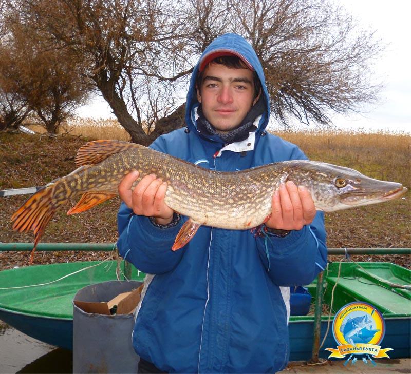 www.sazanya-bukhta.ru/wp-content/uploads/2014/11/D0051.jpg