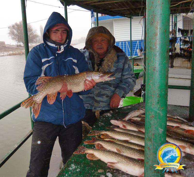 www.sazanya-bukhta.ru/wp-content/uploads/2014/11/D0071.jpg