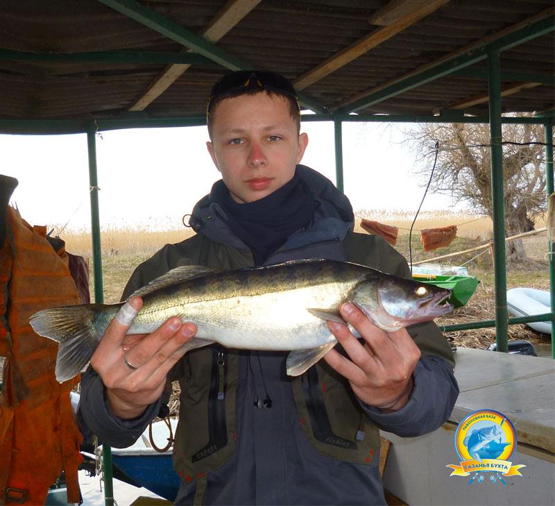 www.sazanya-bukhta.ru/wp-content/uploads/2015/05/DC11.jpg