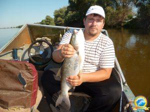 Главное в рыбалке - это прикормка.