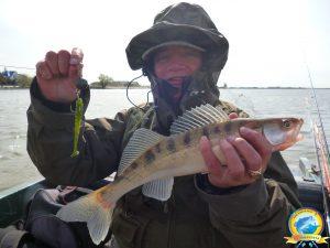Хорошая приманка - залог успешной рыбалки