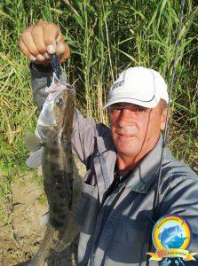 Хороший выдался день на рыбалке! Злые и жестокие судаки не давали скучать!