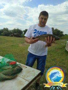 Уловы летней рыбалки!